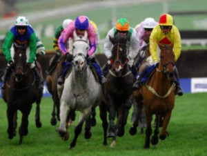 horse racing free tips 2