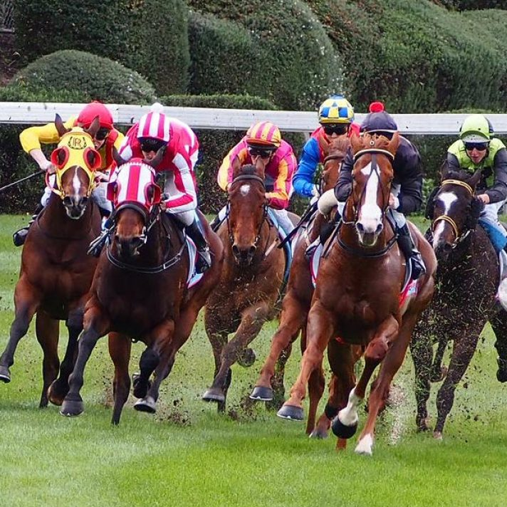 Horse Racing Tips | 48 units Profit Saturday | Red Letter Day