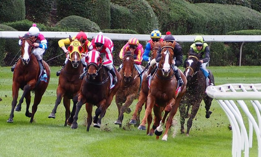 14 Horse Racing winners 38% win strike rate March