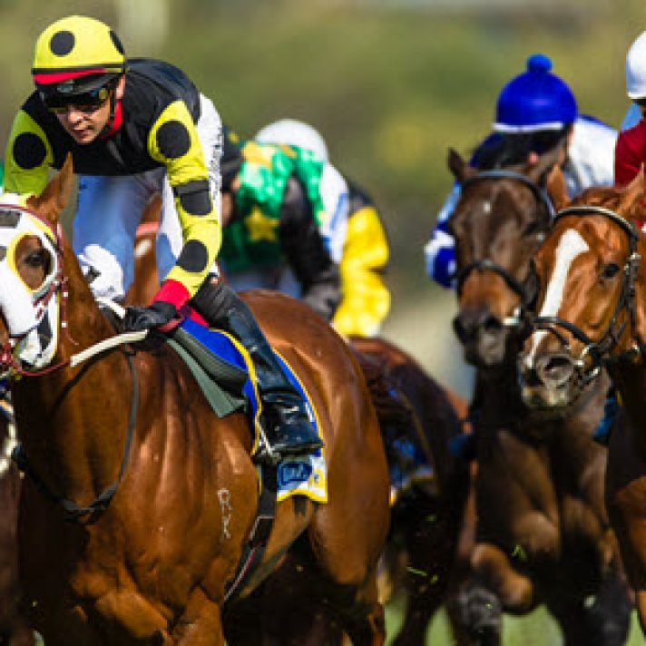 Expert Horse Racing Tips | 2019 April 27th – May 3rd | Reading The Play