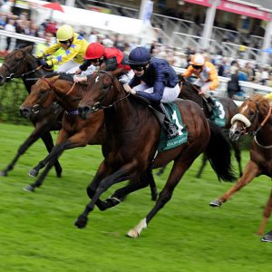 horse racing tips, horse racing best bets, horse racing betting advice australia