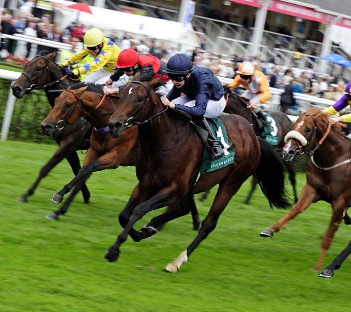 Horse Racing Best Bets, Tips, Previews & Results